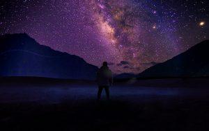 Canopy of Stars