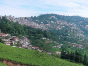 Best Hill Stations in India for a Revitalising Vacation