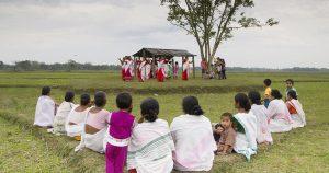 Assam Voluntourism in India happyeasygo