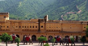 Jaipur Volunteer advanture blog happyeasygo