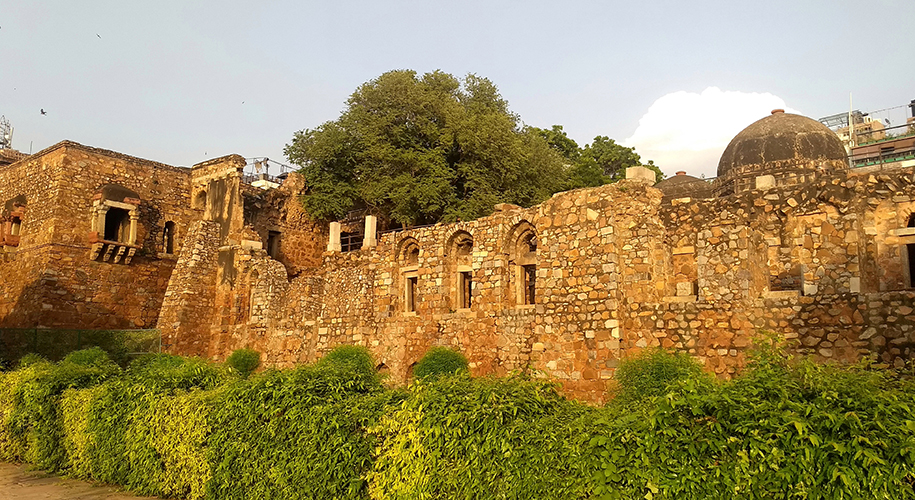 Hauz-Khas-Feel-the-buzz