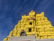 A Travellers guide to Ramanathaswamy Temple