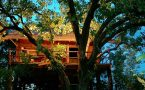 7 Tree Houses in India for an Unparalleled Experience