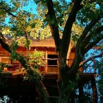 Pugdundee-Safari-Tree-House-Hideaway,-Bandhavgarh-National-Park,-Madhya-Pradesh