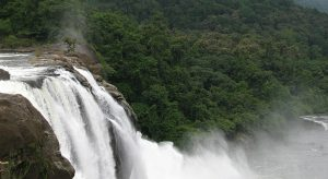 Rainforest-Resort,-Athirapally-Falls,-Kerala