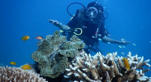 Scuba-diving-in-Andaman