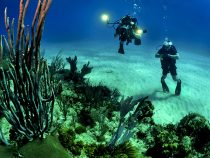 13 things to do on your first Andaman Tour