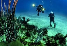 10 things to do on your first Andaman Tour