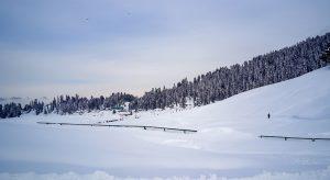 Ski-in-Gulmarg