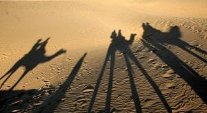 Desert-National-Park