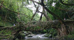 Mawlynnong,-Meghalaya