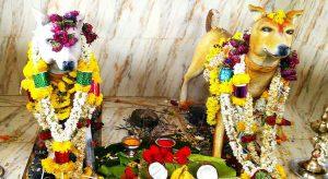 Channapatn Dog. Temple
