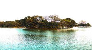 Paddling through the Ulsoor Lake